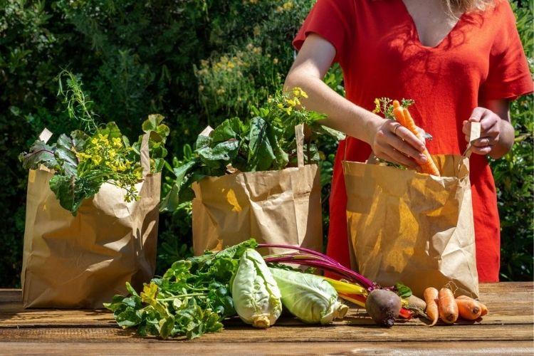 aliments biologiques avantages