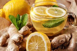 bienfaits du gingembre pour le système cardiovasculaire